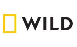 wild-logo-250x152