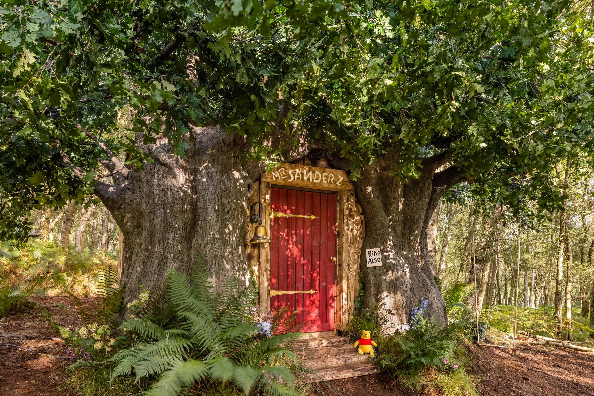 Disney inspired Winnie the Pooh house in the Original Hundred Acre Wood lists on Airbnb