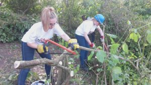 Disney UK gets 'stuck in' at the Wildfowl and Wetlands Trust - sawing