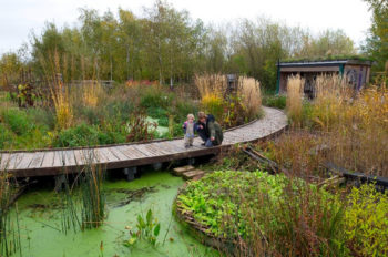 Disney UK gets 'stuck in' at the Wildfowl and Wetlands Trust